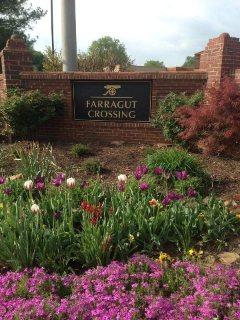Farragut subdivision